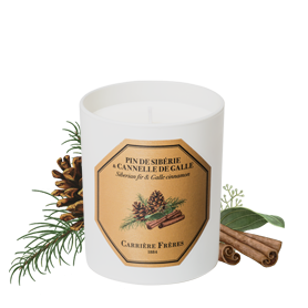 Siberian Fir & Galle Cinnamon
