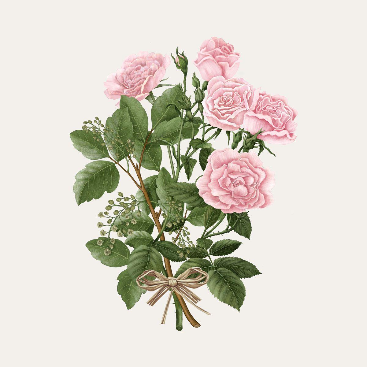 La Rose Aime l'Ambre