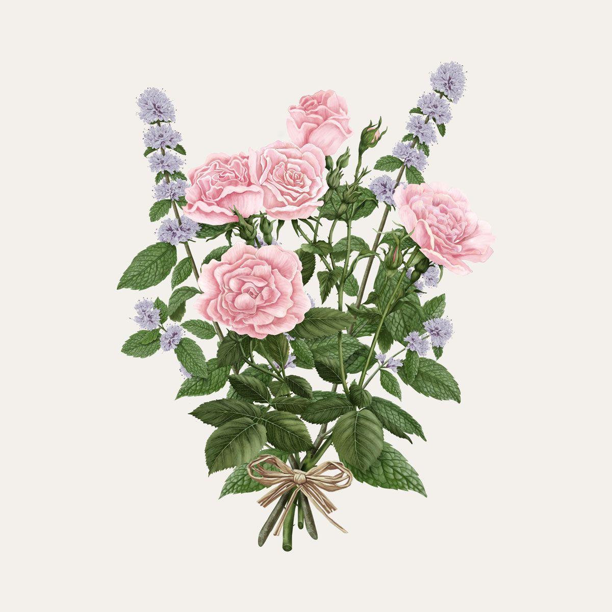 La Rose Aime La Menthe